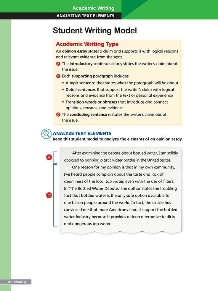essay for academic writing
