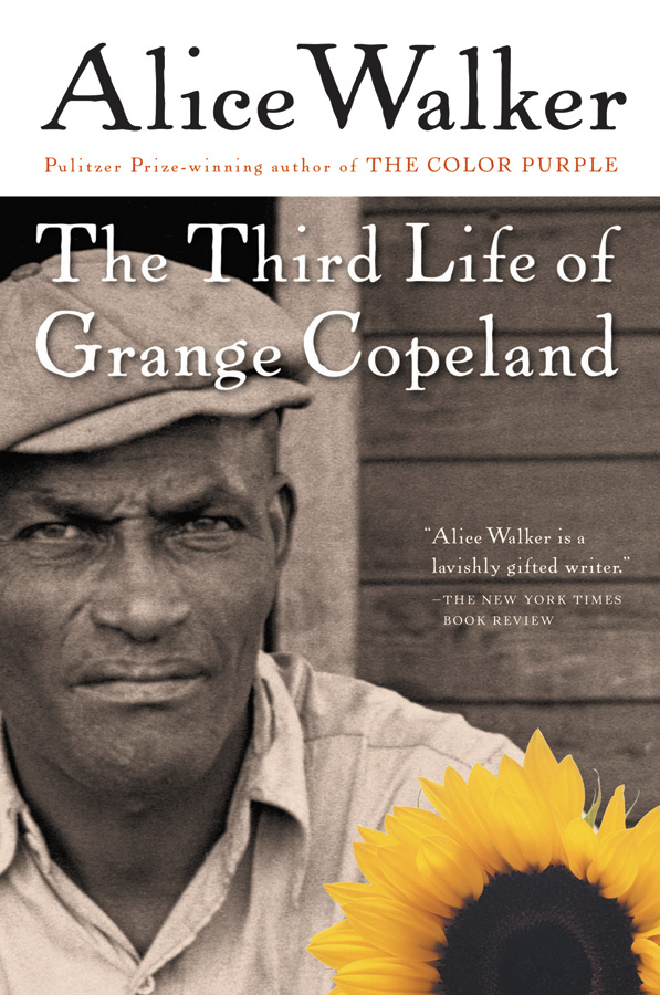 The Third Life of Grange Copeland-9780156028363