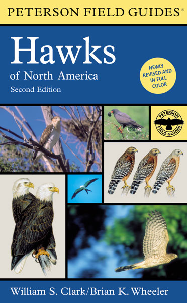 A Peterson Field Guide to Hawks of North America-9780395670675