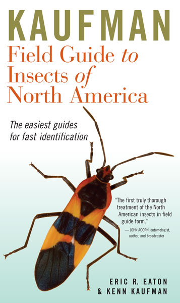 Kaufman Field Guide to Insects of North America-9780618153107