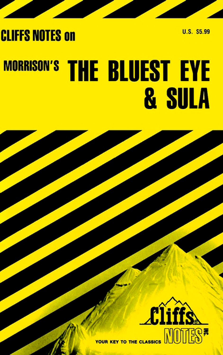 CliffsNotes on Morrison's The Bluest Eye & Sula-9780822002512