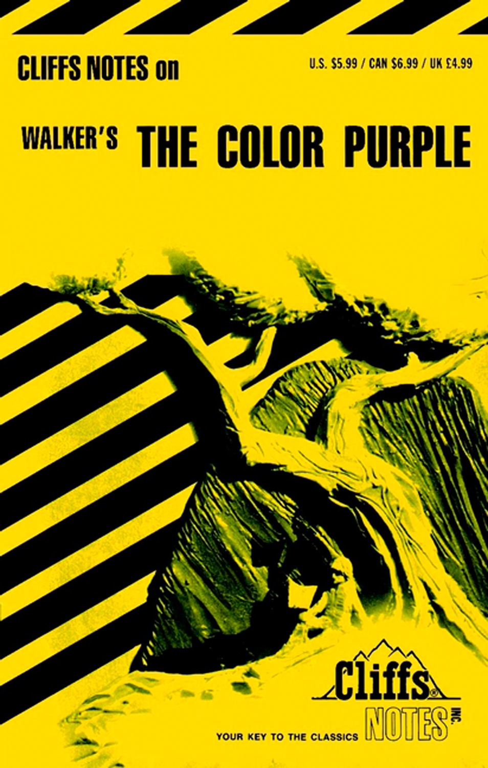 CliffsNotes on Walker's The Color Purple-9780822003083