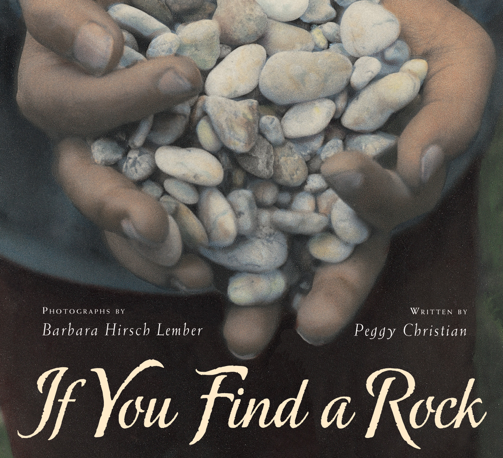 If You Find a Rock-9780152063542