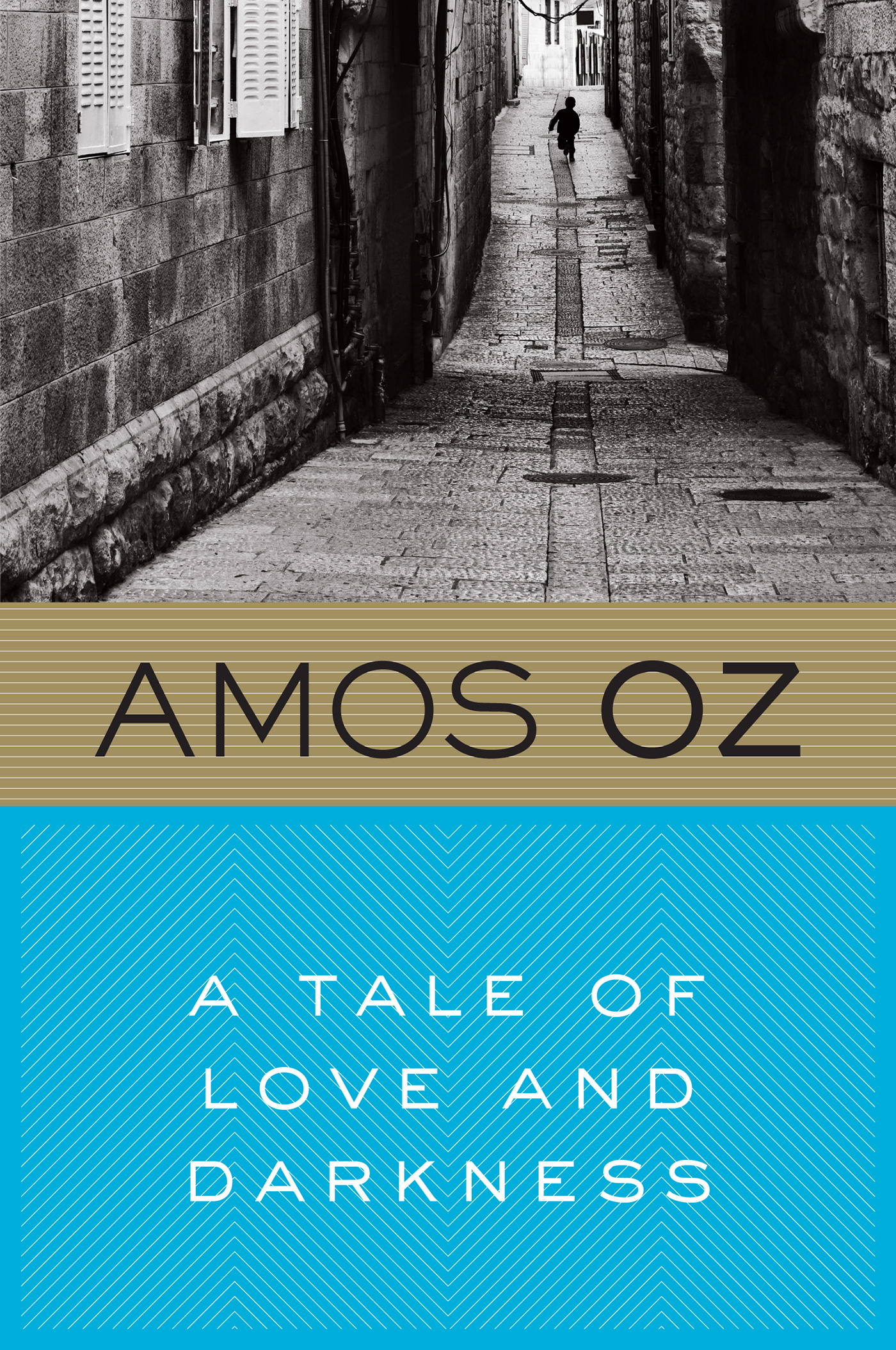 A Tale of Love and Darkness-9780156032520