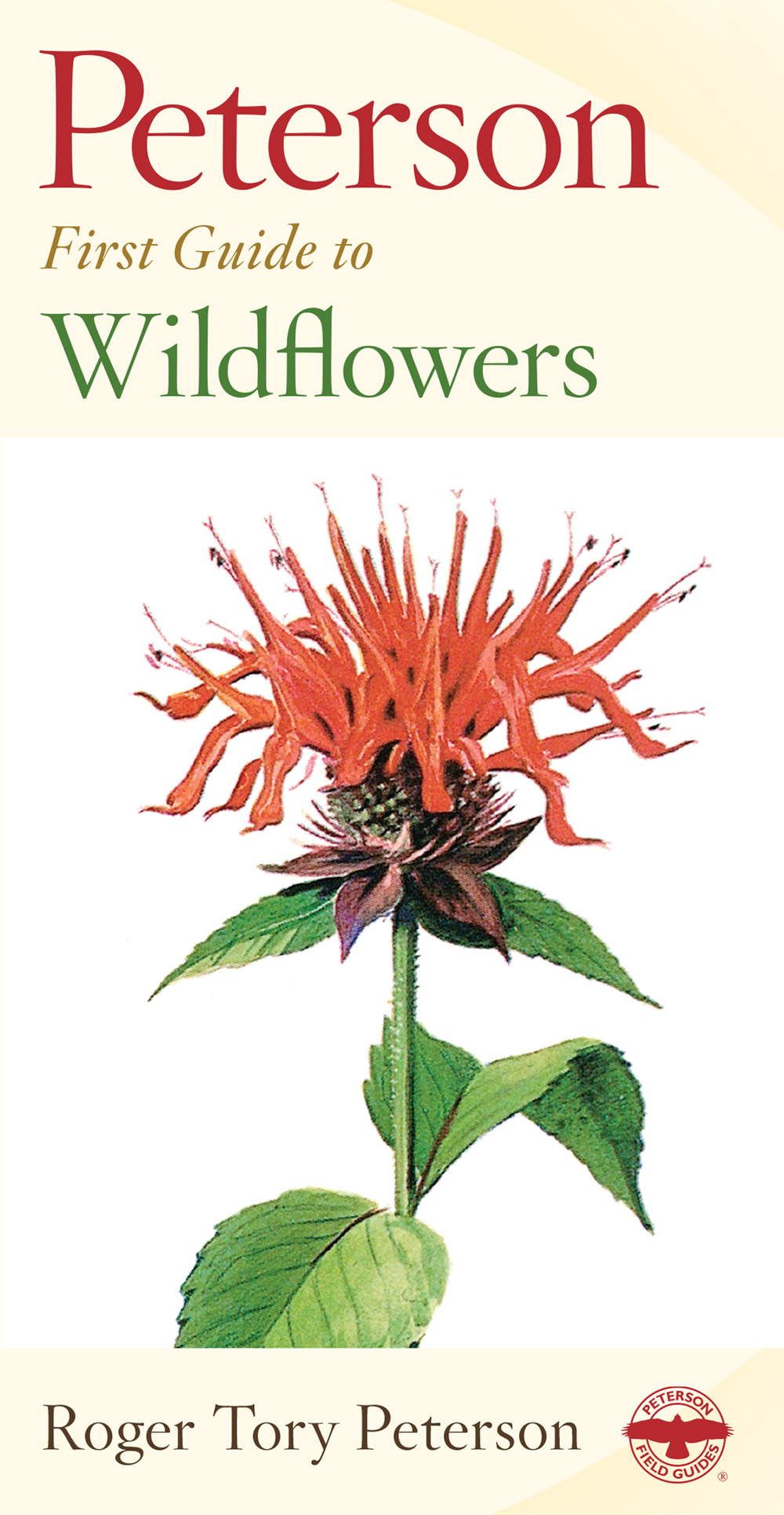 Peterson First Guide to Wildflowers of Northeastern and North-central North America-9780395906675