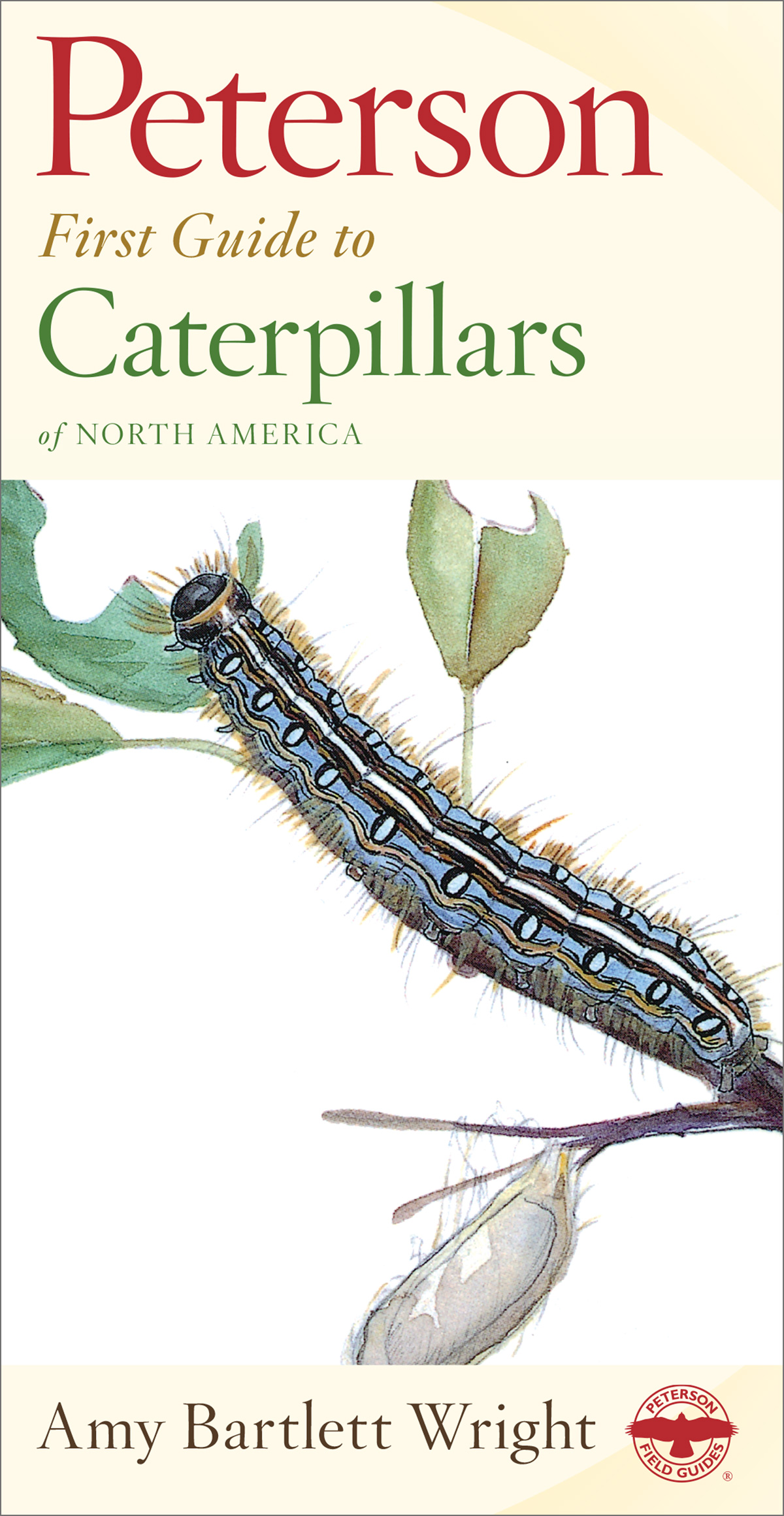 Peterson First Guide to Caterpillars of North America-9780395911846