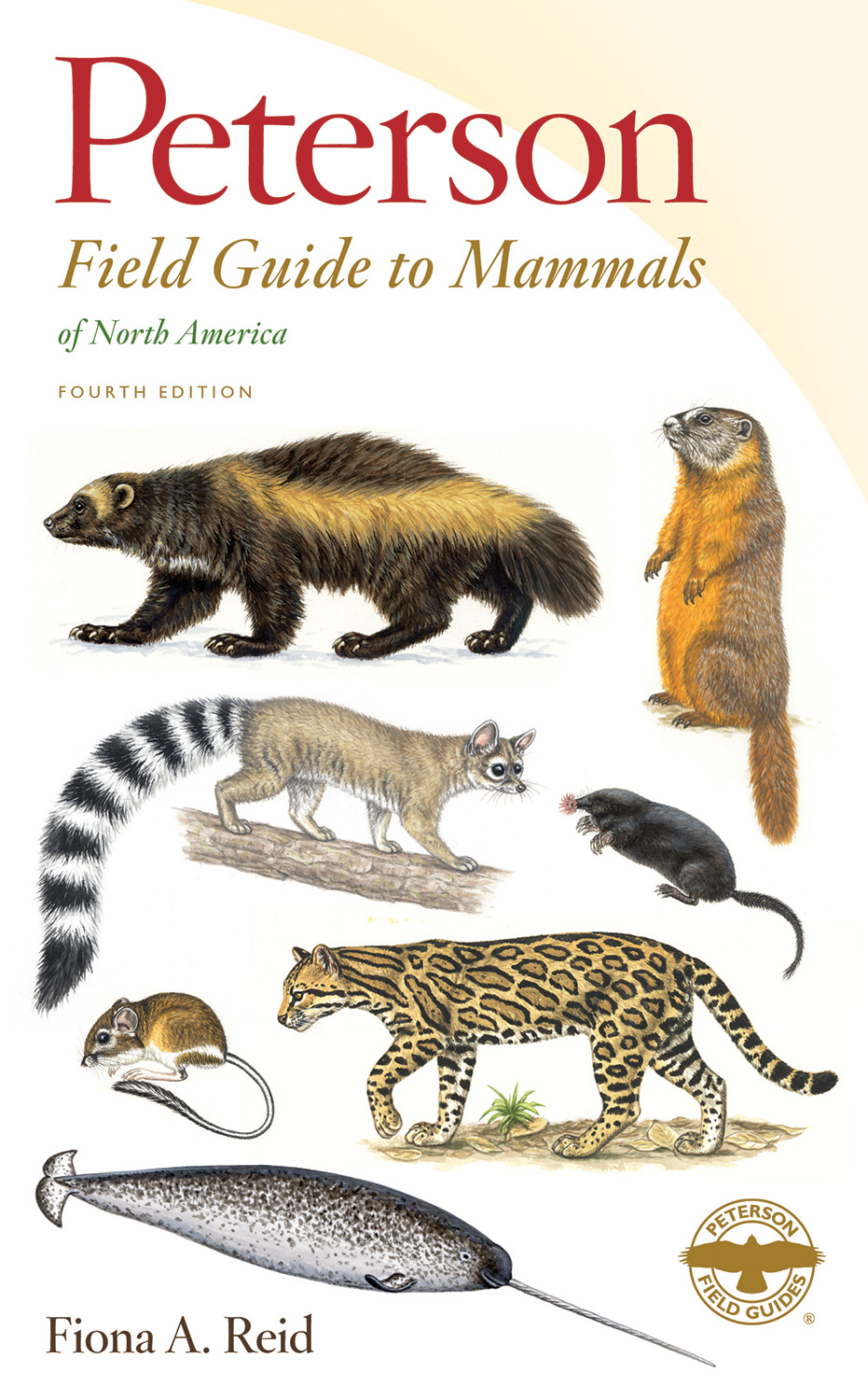 Peterson Field Guide to Mammals of North America-9780395935965