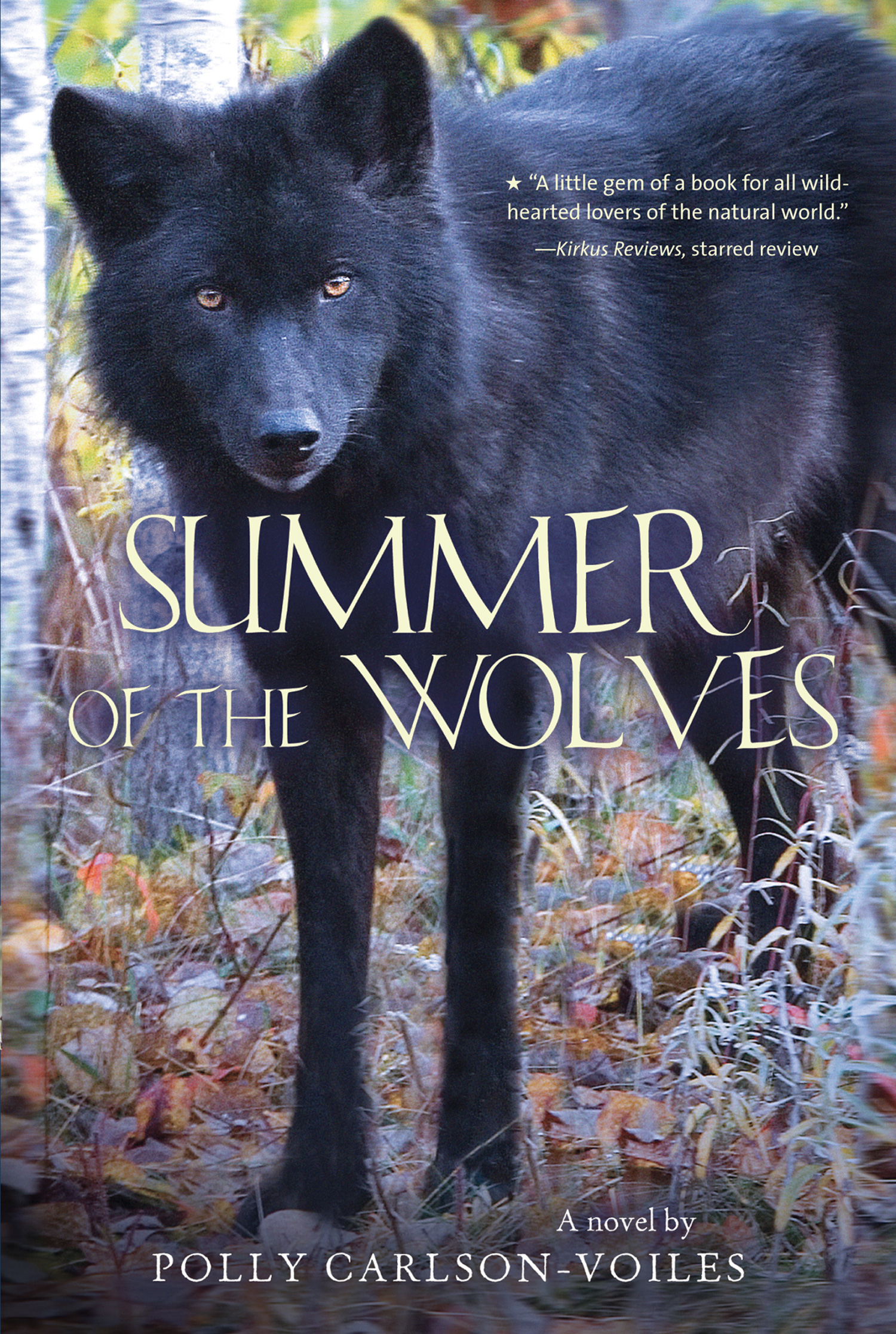 Summer of the Wolves-9780544022768