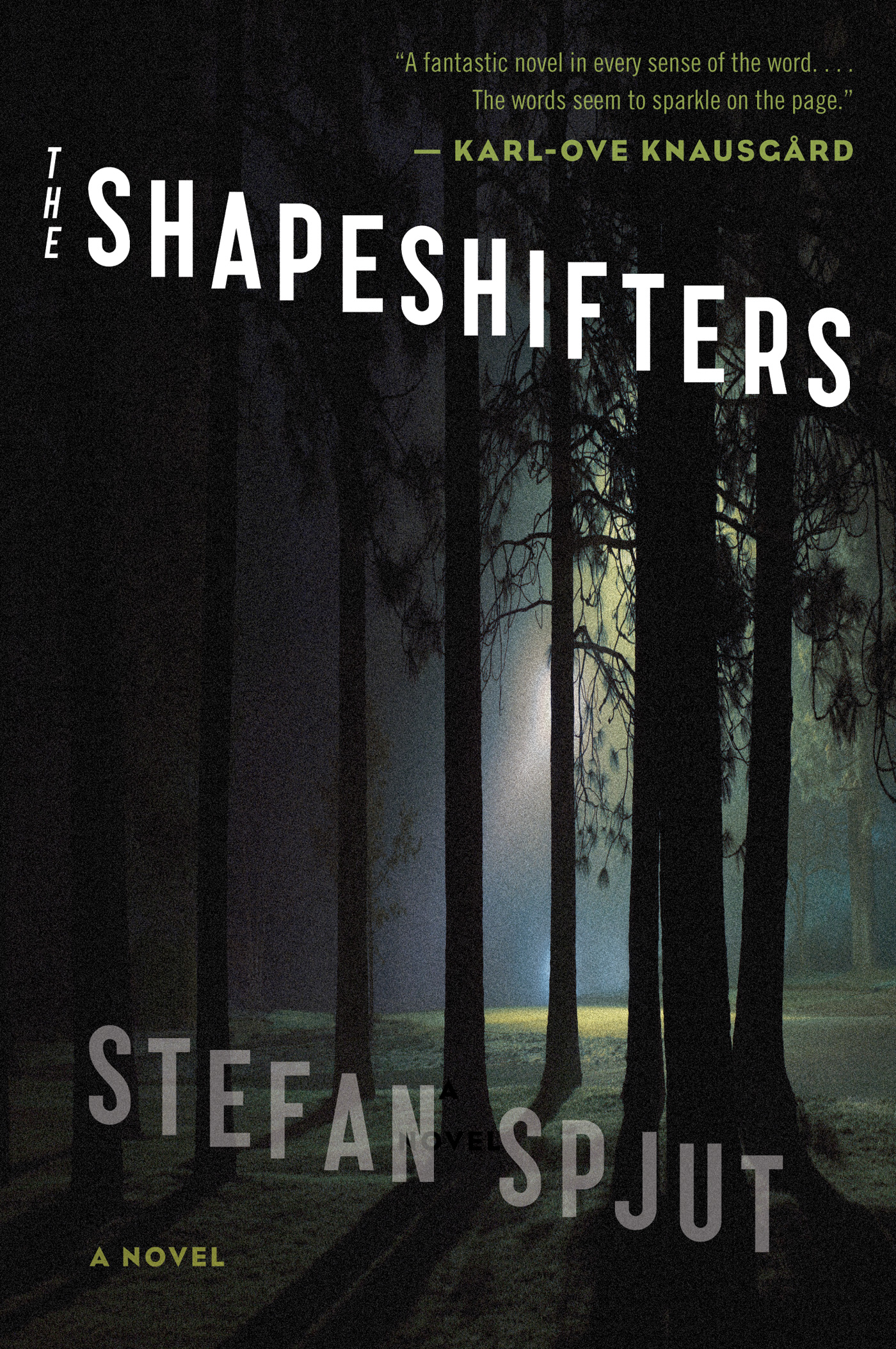 The Shapeshifters-9780544084087