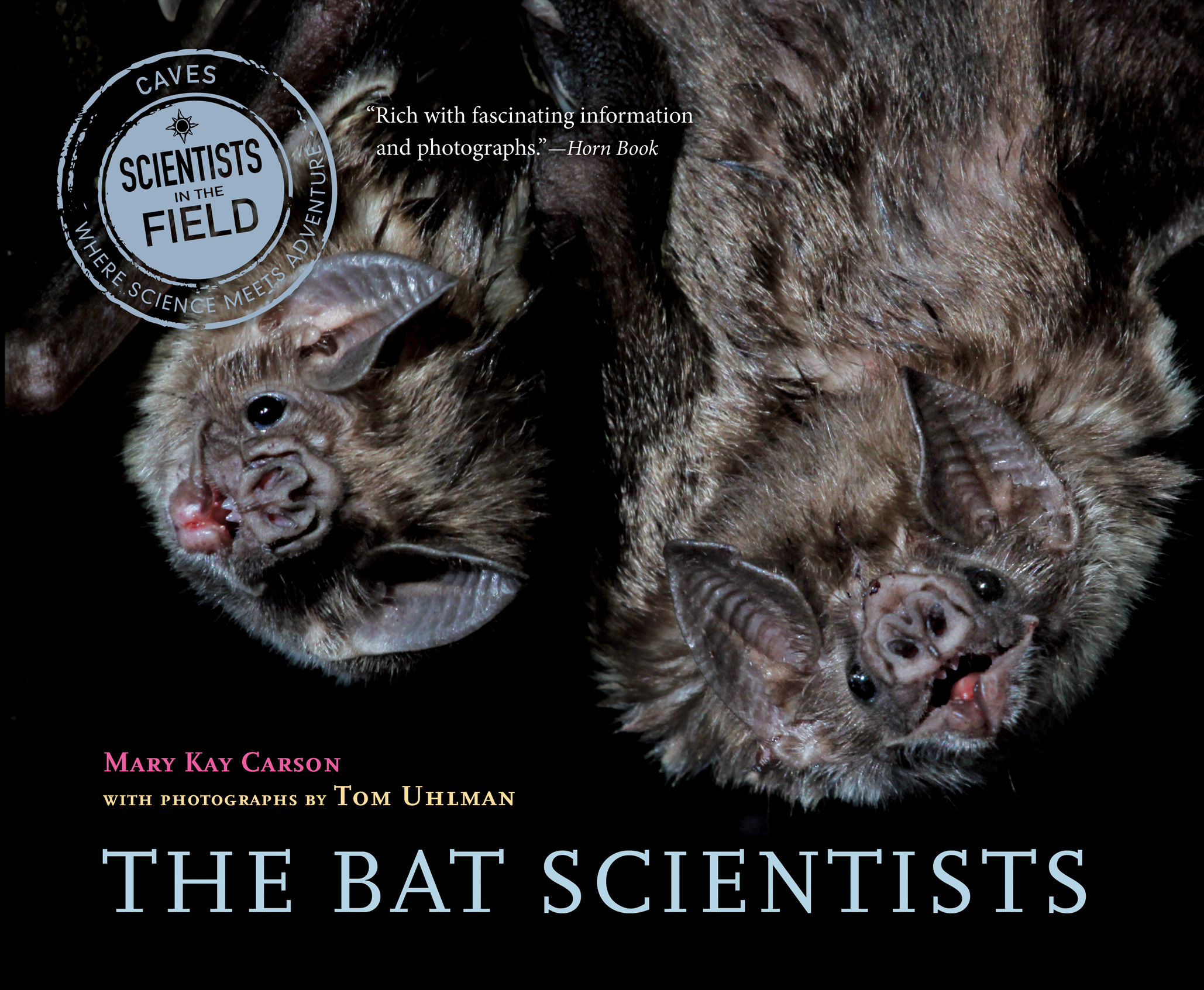 The Bat Scientists-9780544104938
