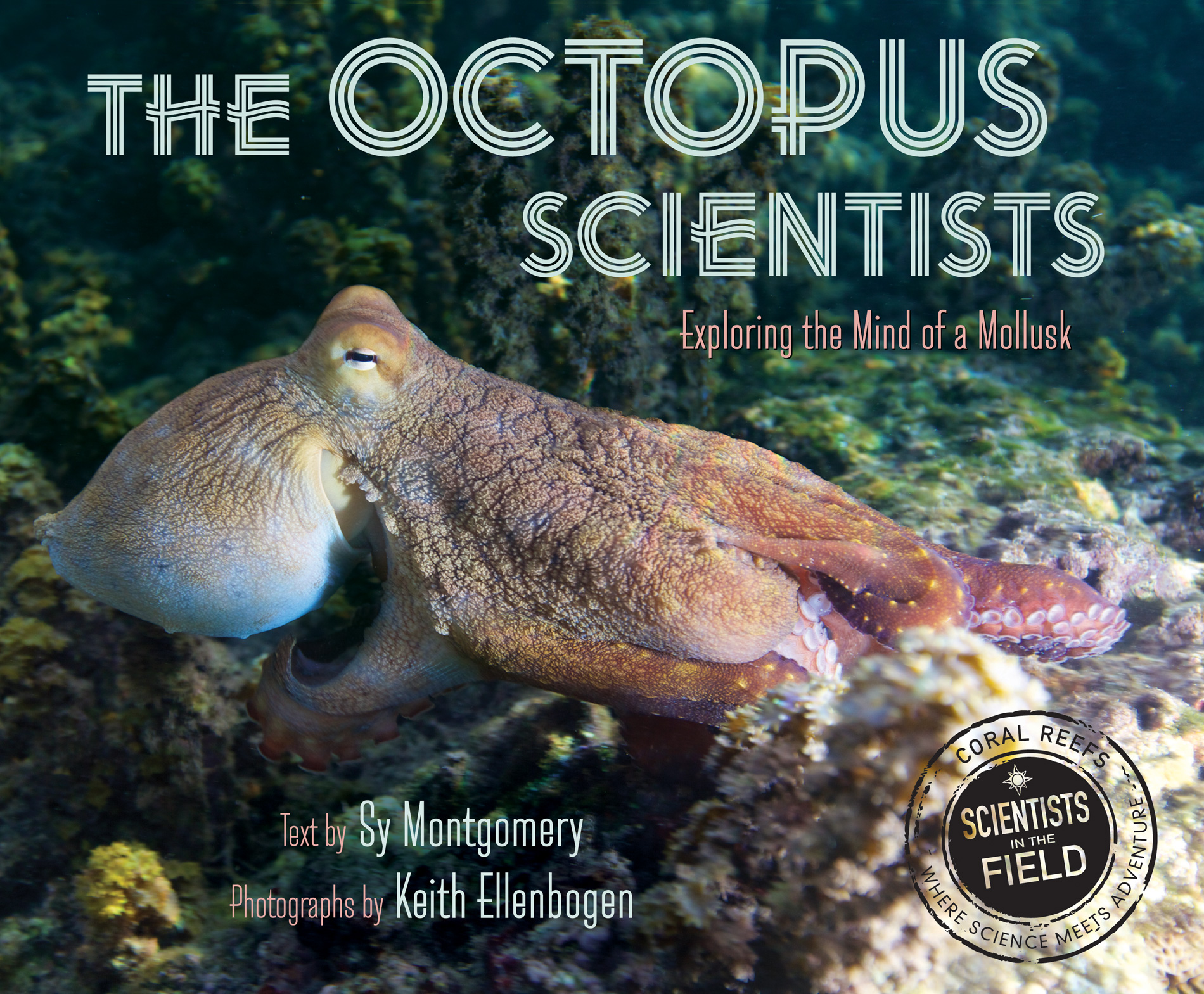 The Octopus Scientists-9780544232709