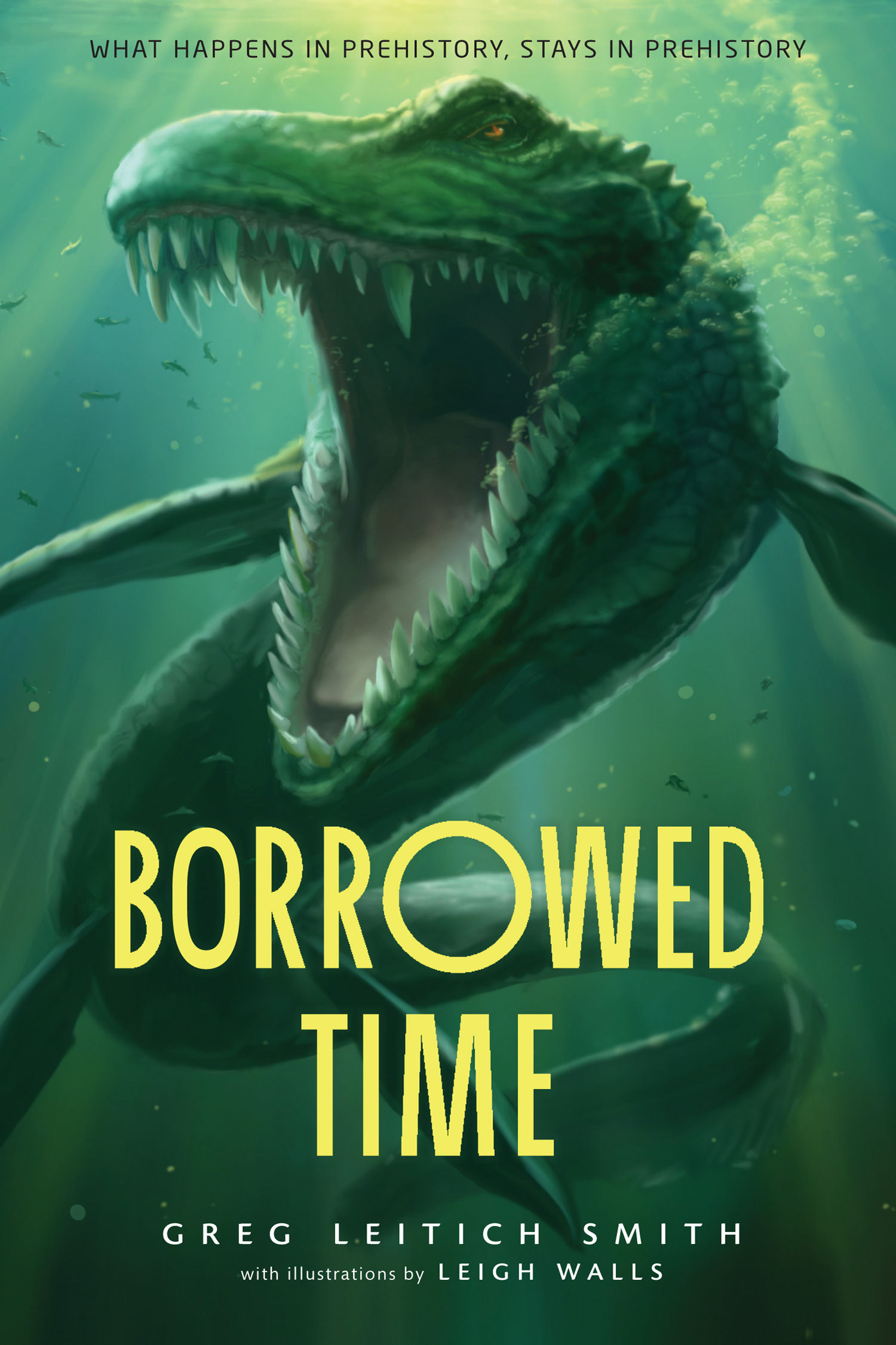 Borrowed Time-9780544237117