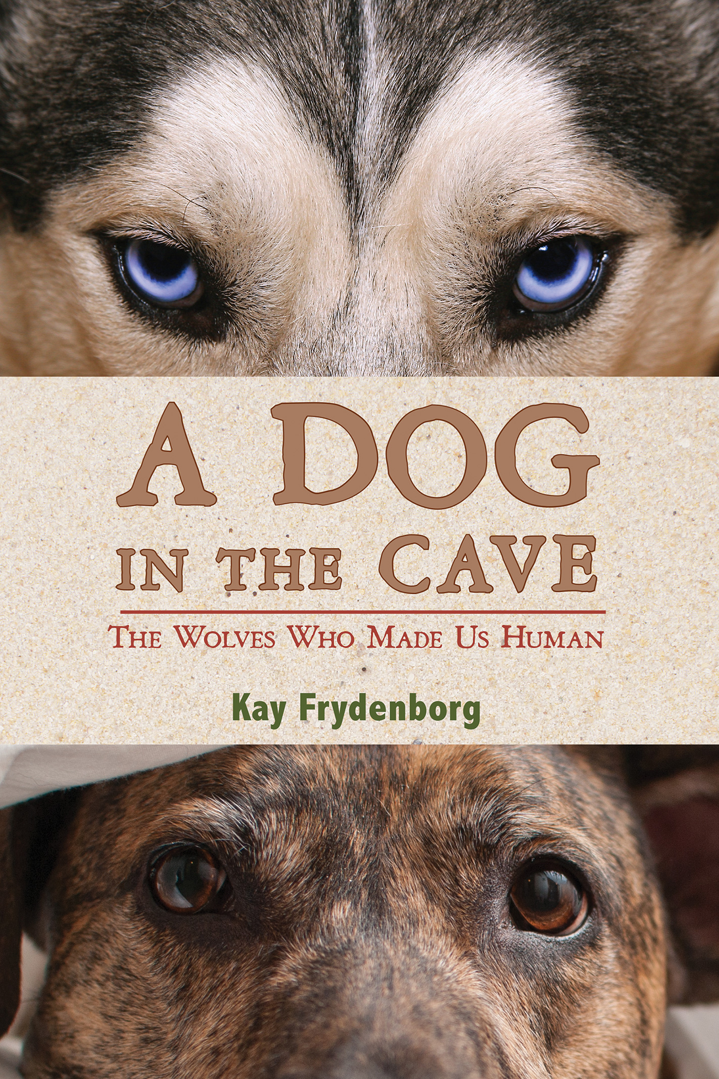 A Dog in the Cave-9780544286566