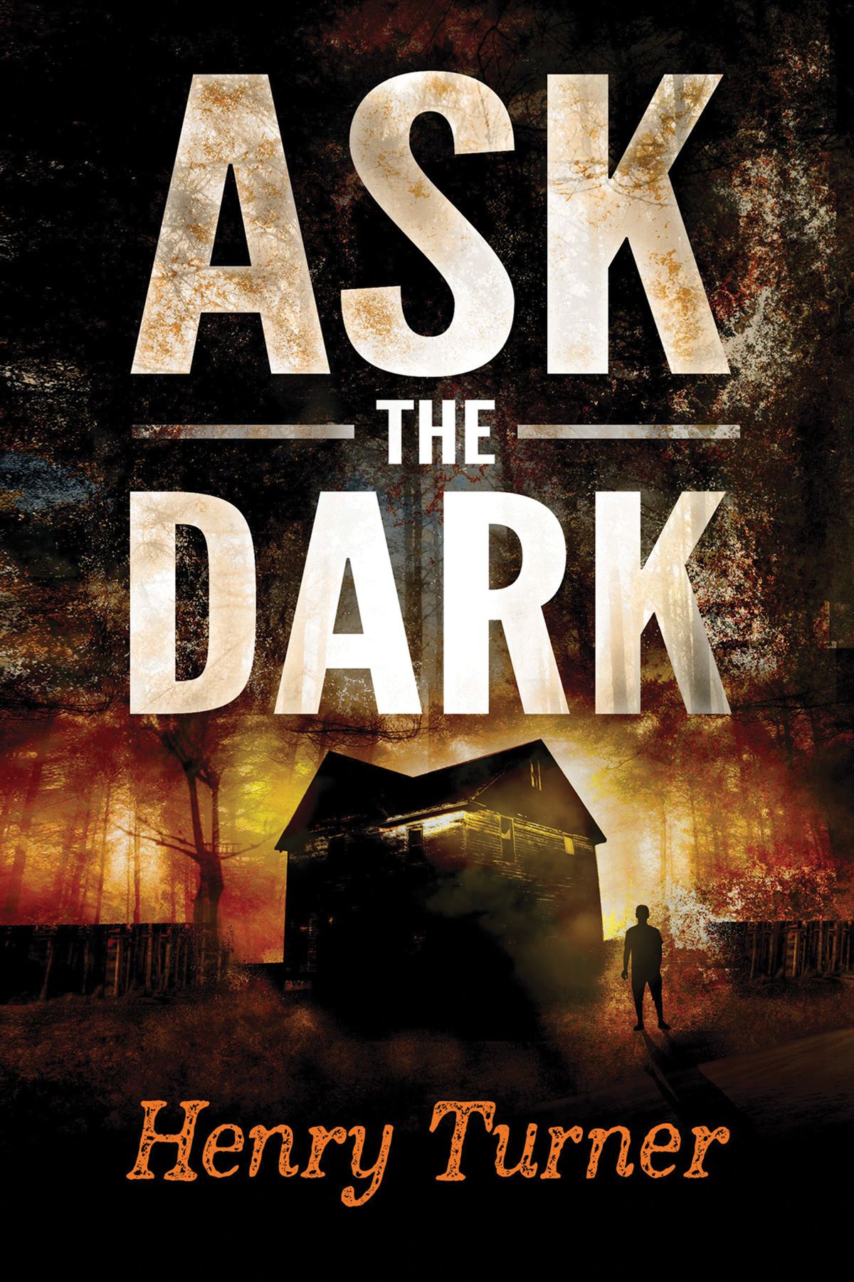 Ask the Dark-9780544308275
