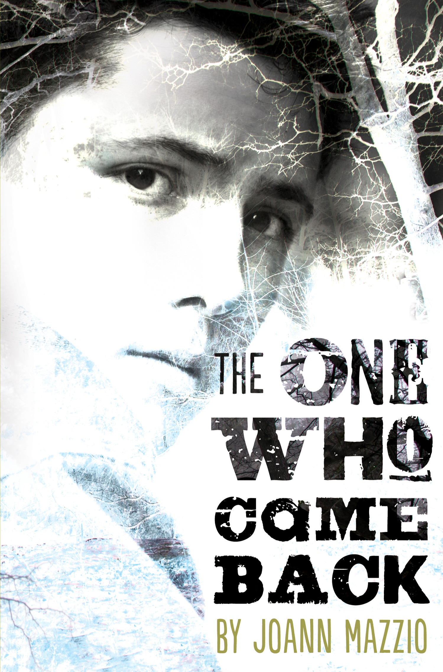 The One Who Came Back-9780544336124