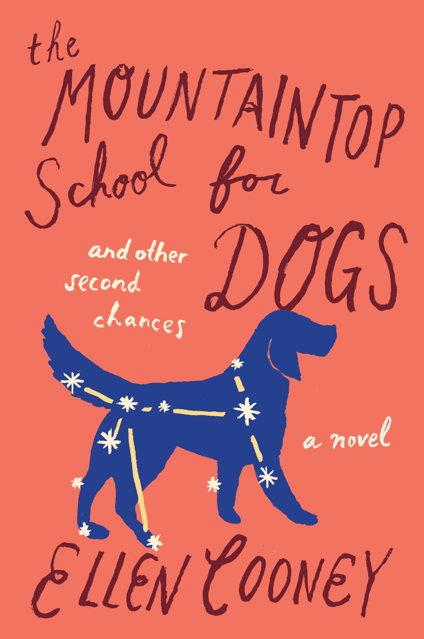 The Mountaintop School for Dogs and Other Second Chances-9780544237094
