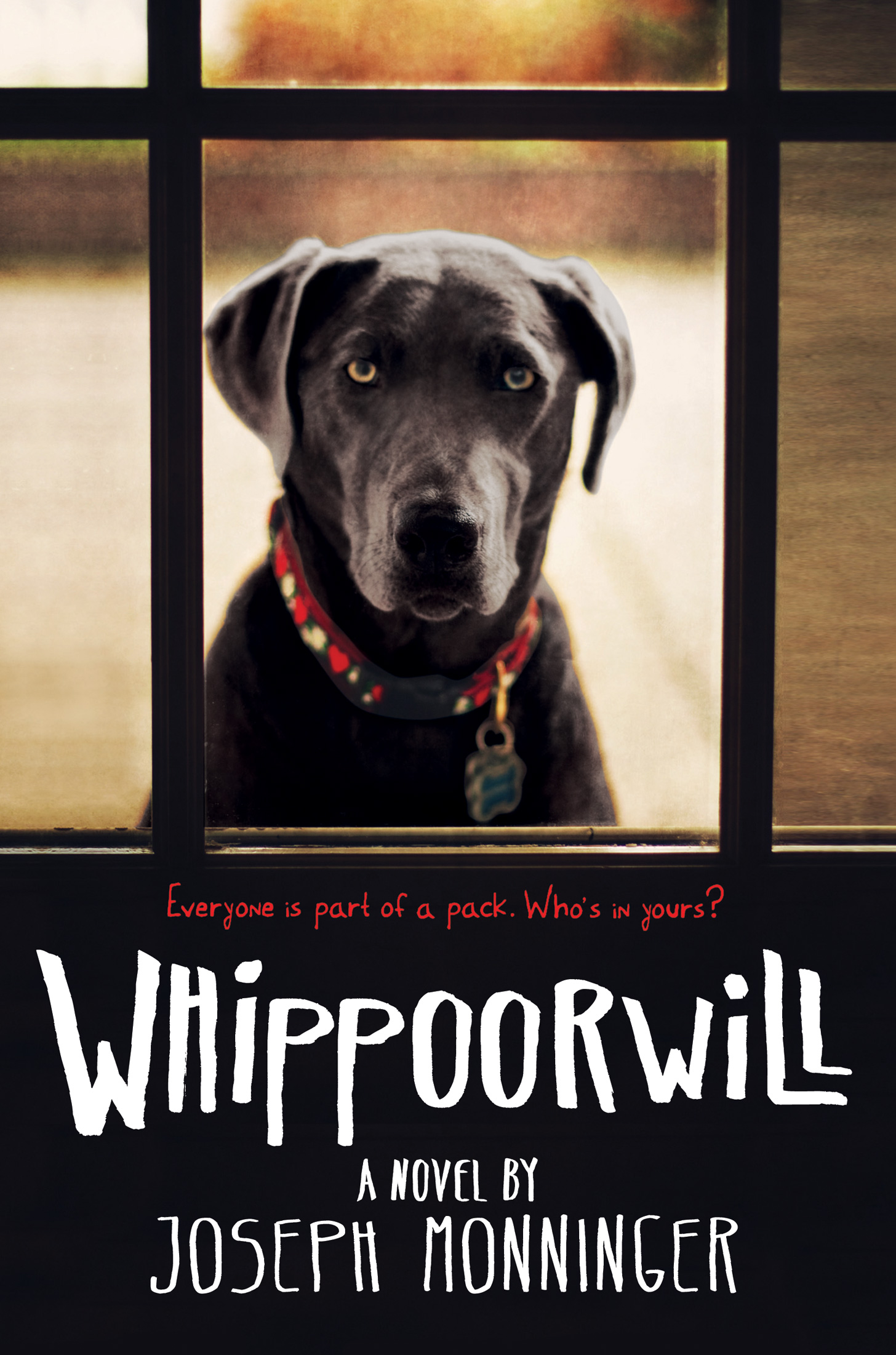 Whippoorwill-9780544531239