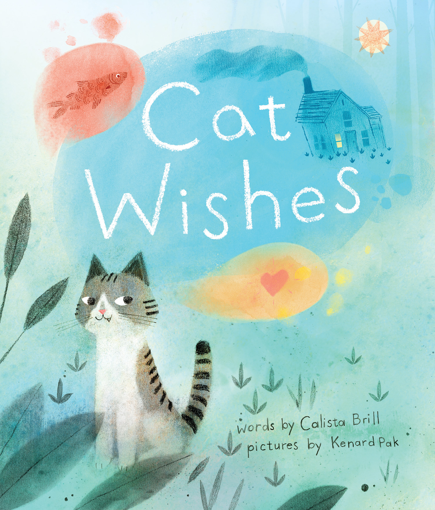 Cat Wishes-9780544610552