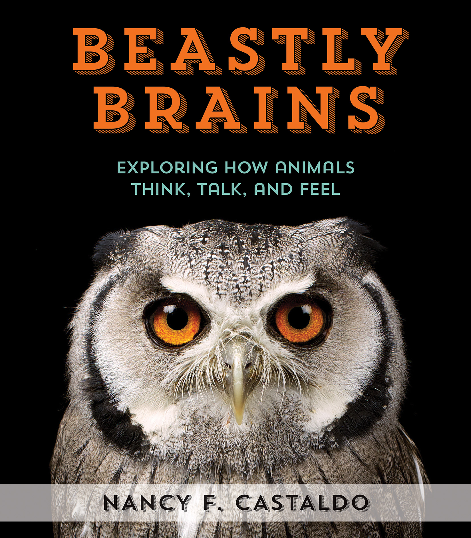 Beastly Brains-9780544633353