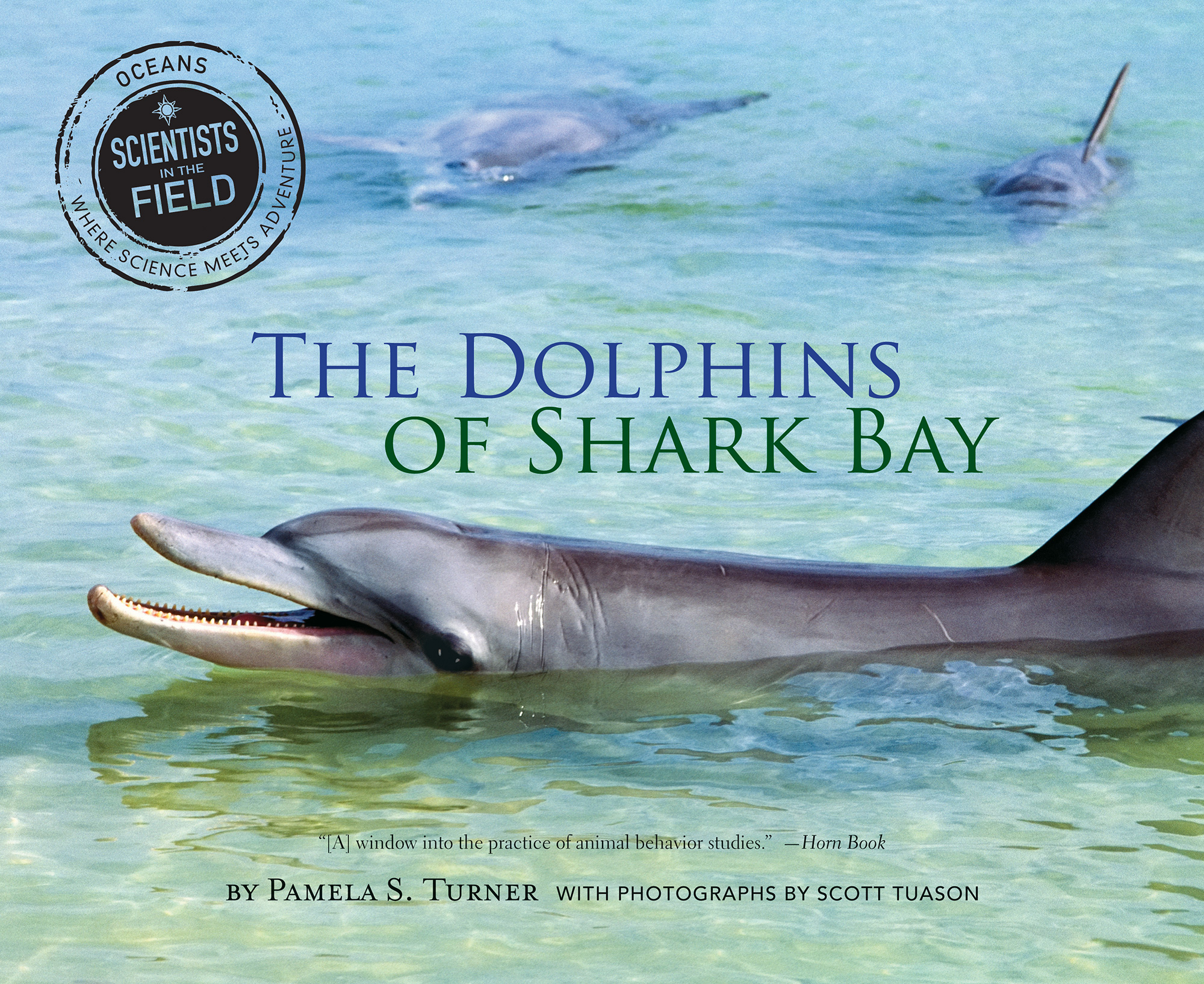 The Dolphins of Shark Bay-9780544809093