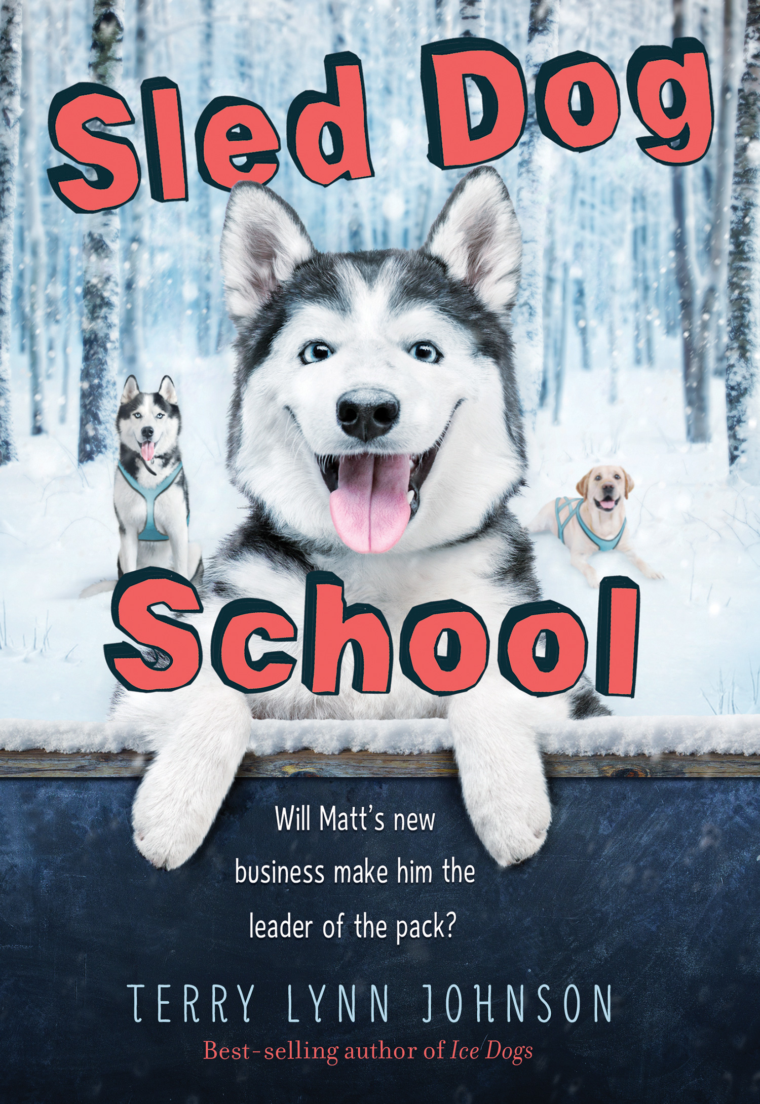 Sled Dog School-9780544873315