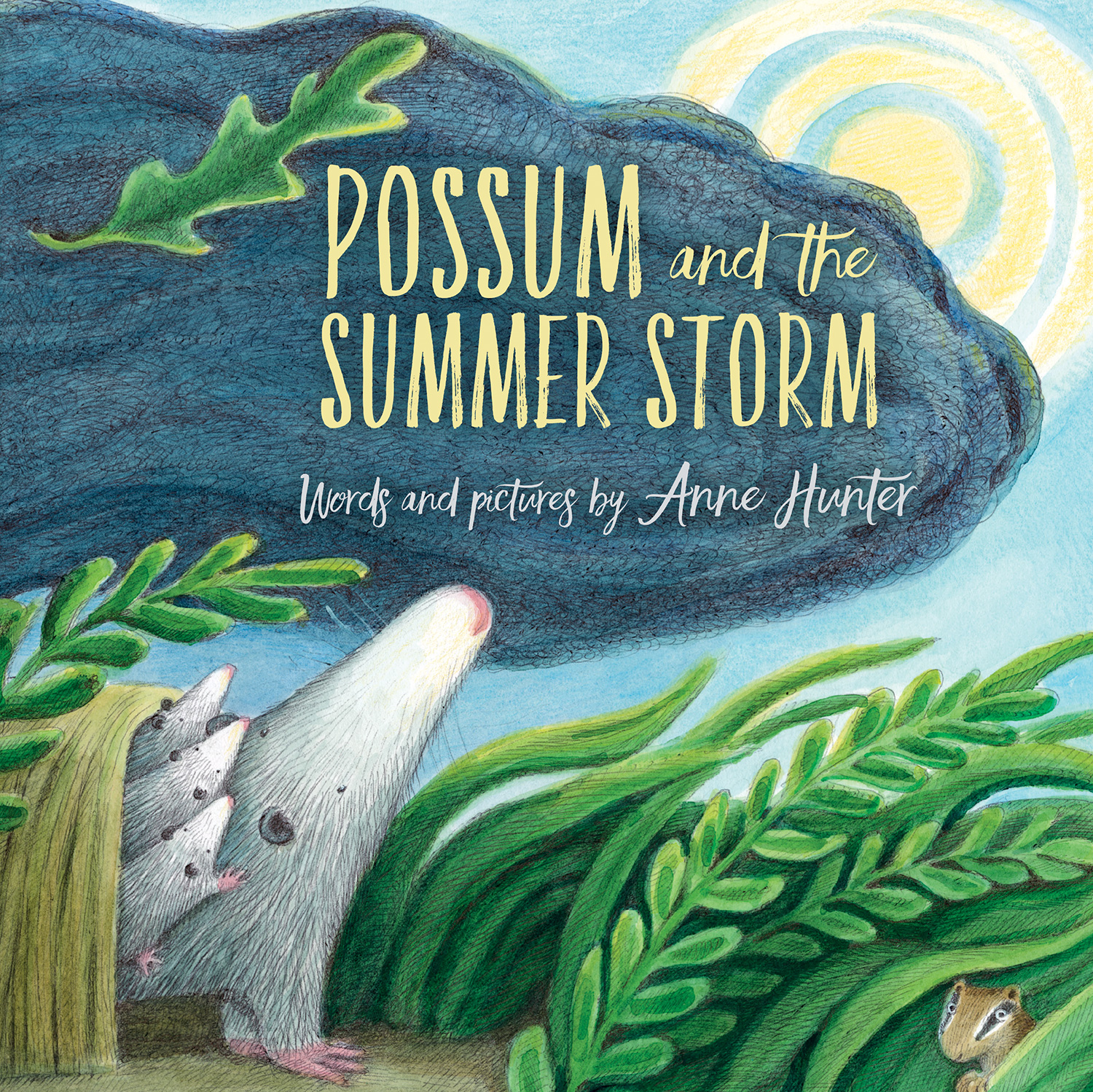 Possum and the Summer Storm-9780544898912