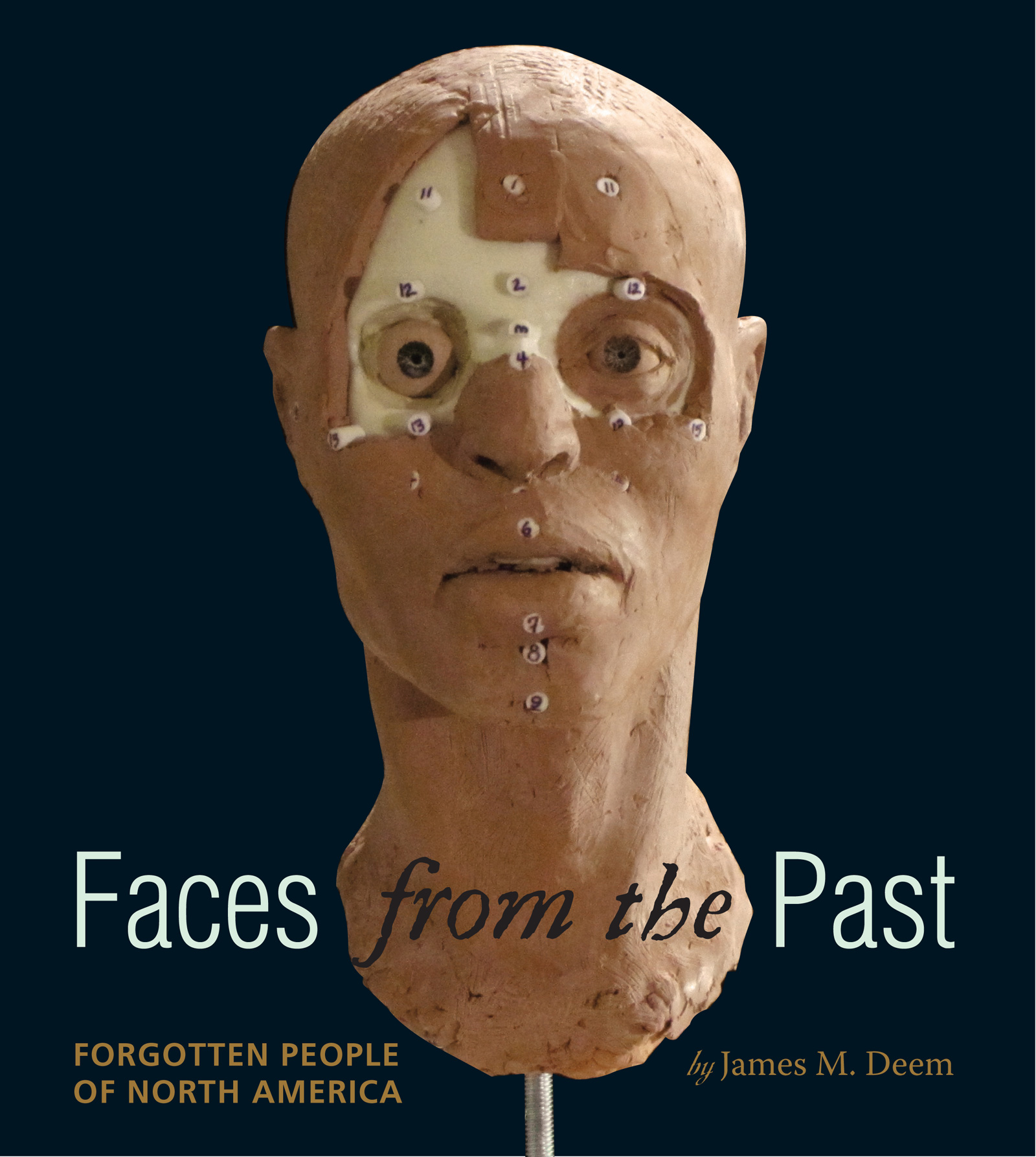 Faces from the Past-9780547370248