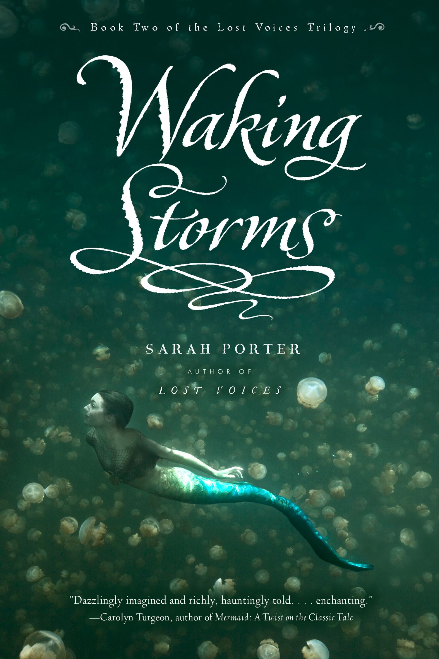 Waking Storms-9780547822730