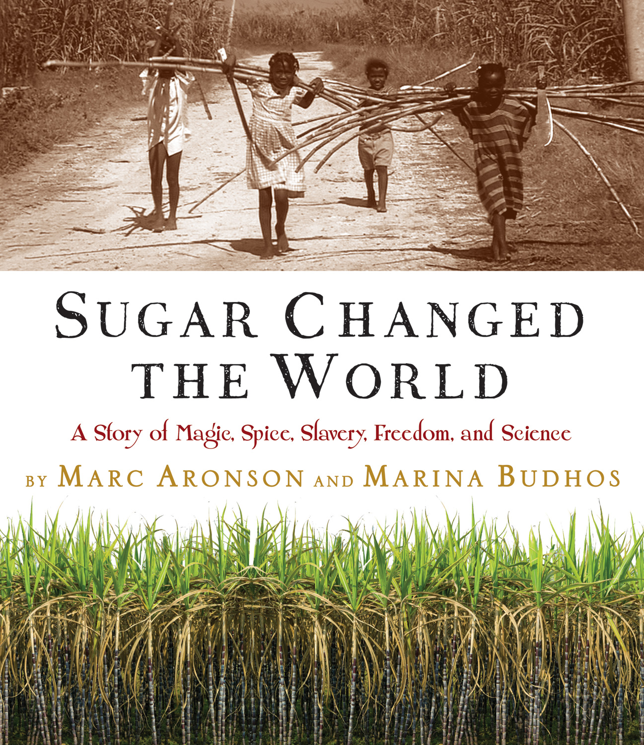 Sugar Changed the World-9780618574926