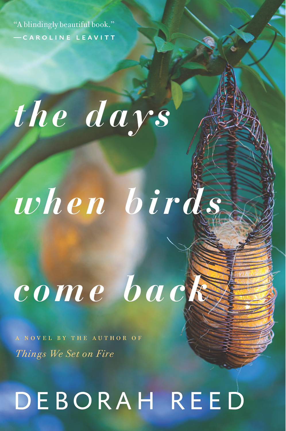 The Days When Birds Come Back-9781328505712