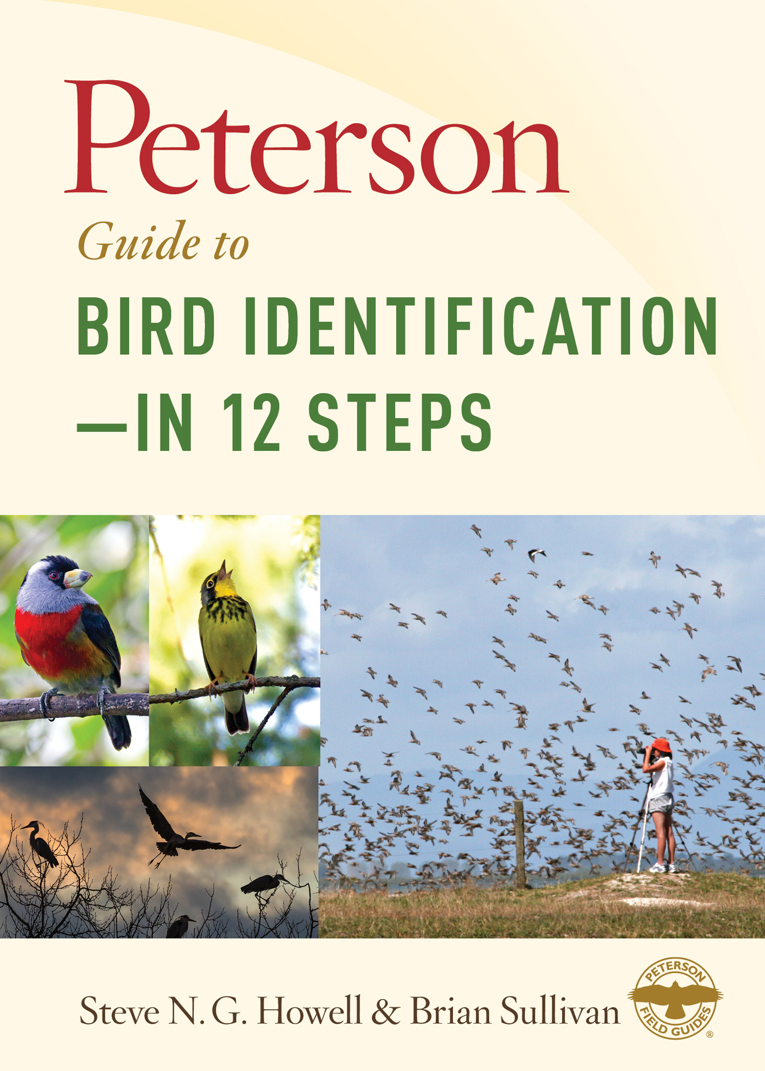 Peterson Guide to Bird Identification—in 12 Steps-9781328662064
