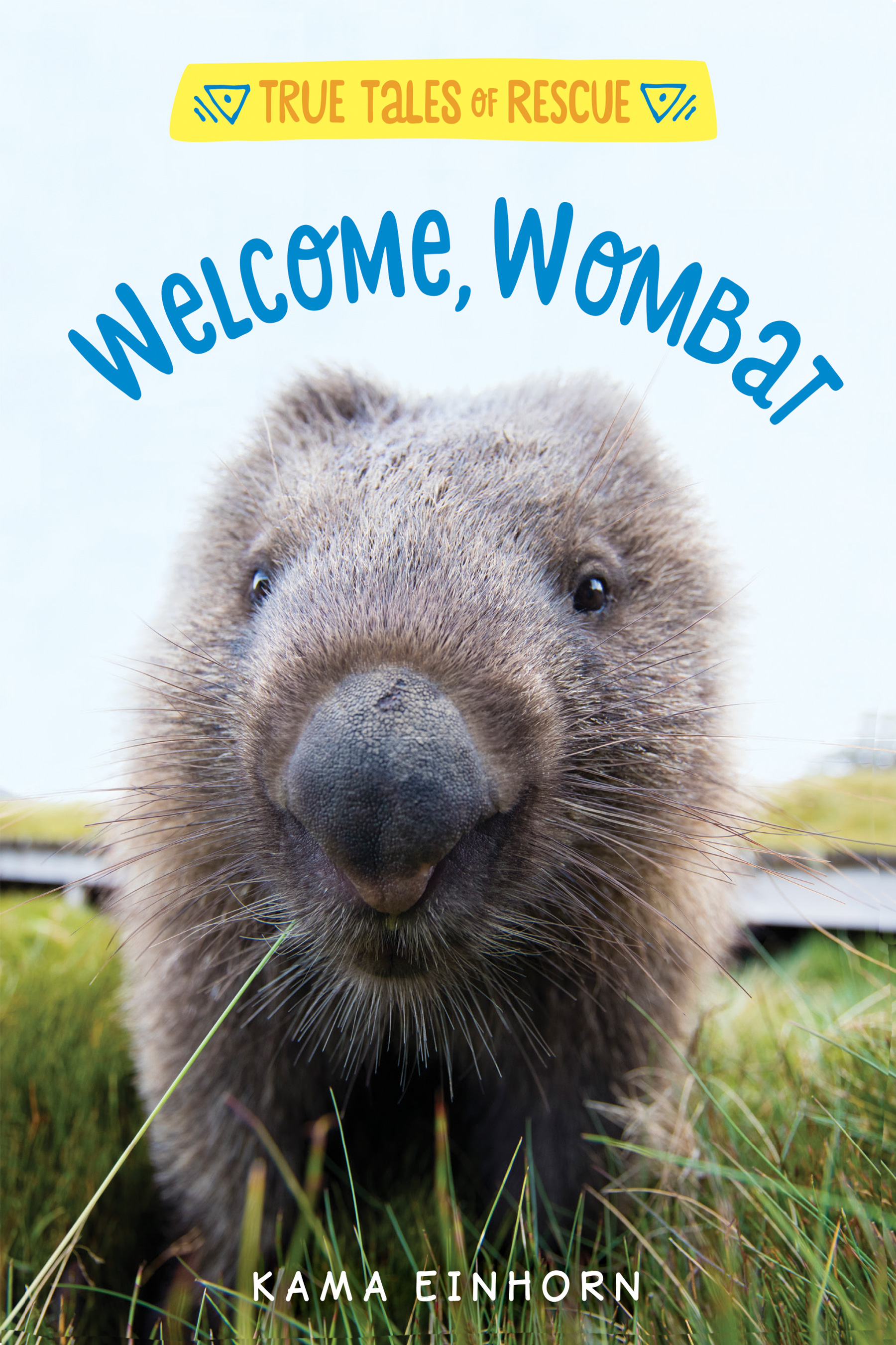 Welcome, Wombat-9781328767028