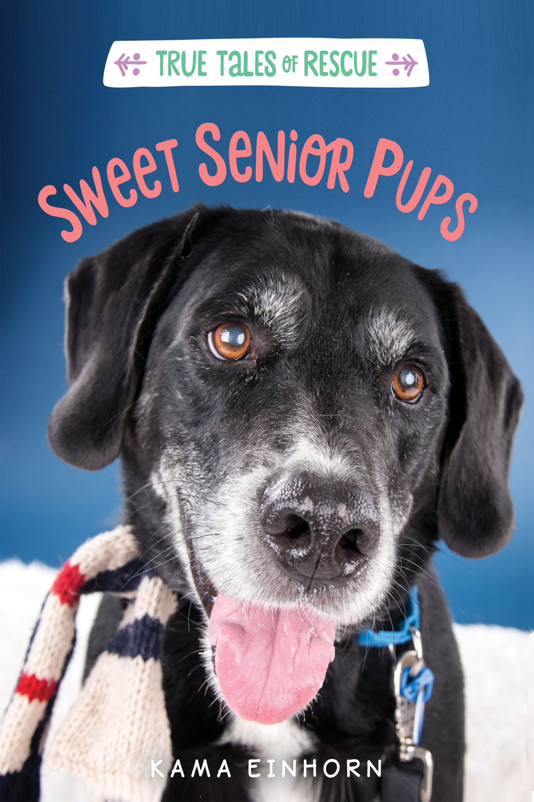 Sweet Senior Pups-9781328767035