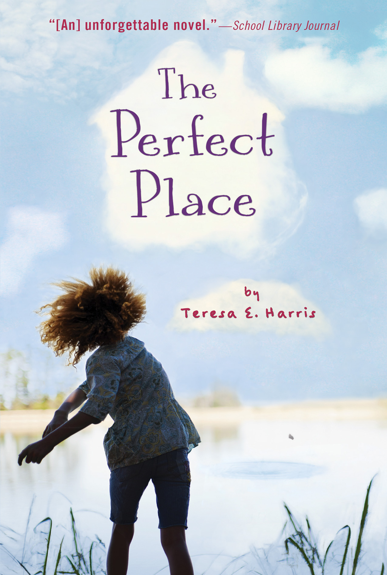 The Perfect Place-9781328784186