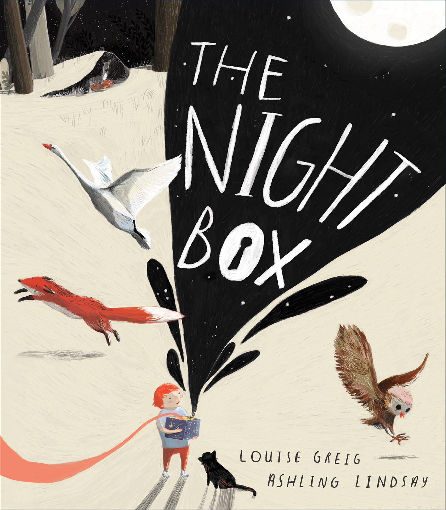 The Night Box-9781328850935