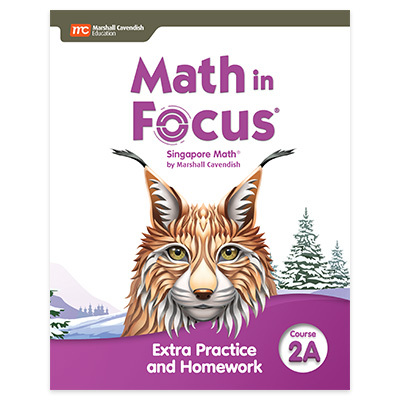 Math in Focus  Extra Practice and Homework Volume A Course 2-9780358103103