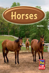 Rigby PM Stars  Leveled Reader Bookroom Package Blue (Levels 9-11) Horses-9780544026599
