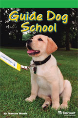 Journeys Leveled Readers  Individual Titles Set (6 copies each) Level J Guide Dog School-9780547267692