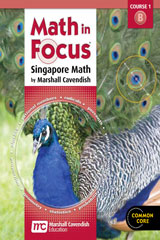 Math in Focus: Singapore Math  Homeschool Package, 2nd semester Grade 6-9780547820941