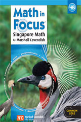 Math in Focus: Singapore Math  Student Edition, Book B Grade 4-9780547875545