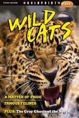Steck-Vaughn BOLDPRINT Talk Teacher's Guide Wild Cats