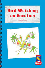 Rigby PM Stars  Individual Student Edition Blue (Levels 9-11) Bird Watching in the Holidays-9780547989914
