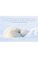 Steck-Vaughn Pair-It Books Foundation  Leveled Reader 6pk Weather and Animals-9780739845097
