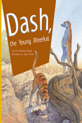 Rigby PM Plus  Individual Student Edition Gold (Levels 21-22) Dash, the Young Meerkat-9780757811791