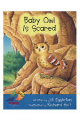 Rigby Sails Early  Leveled Reader 6pk Green Baby Owl Is Scared-9780757829314