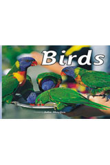 Rigby Focus Emergent  Leveled Reader 6pk Nonfiction (Levels A-E) Birds-9780757852787