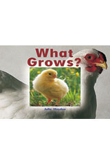 Rigby Focus Emergent  Leveled Reader 6pk Nonfiction (Levels A-E) What Grows?-9780757852794