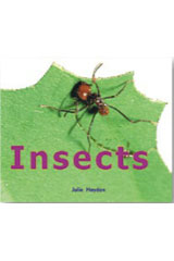 Rigby Focus Early  Leveled Reader 6pk Nonfiction Insects-9780757853036