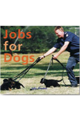 Rigby Focus Early  Leveled Reader 6pk Nonfiction Jobs For Dogs-9780757853166