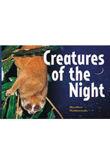 Rigby Focus Early Fluency  Leveled Reader 6pk Nonfiction Creatures Of the Night-9780757853531